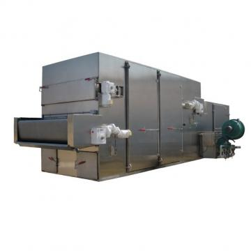 Heat Pump Hot Air Mesh Belt Fish Chilli Mango Fruit Vegetable Drying Dehydrator Machine Dryer